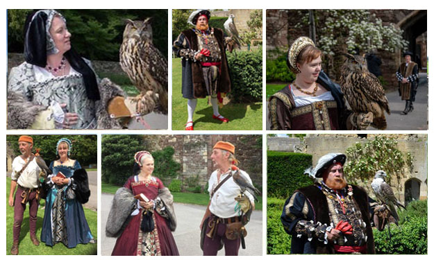 Falconry displays England history